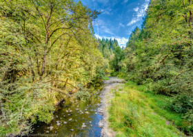 1-web-tupper-rd-yamhill-oregon-large-acreage-yamhill-county-real-estate-for-sale-build-the-kelly-group-real-estate